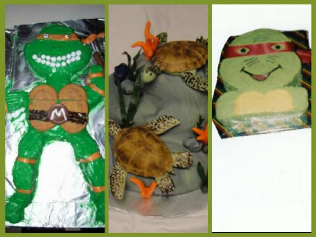 collection of turtle cakes